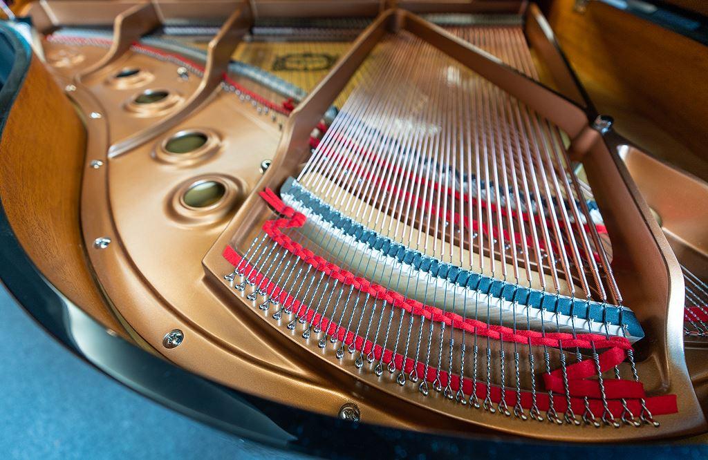 """Tìm hiểu đàn piano """"ma"""" Yamaha Disklavier Enspire duy nhất tại Việt Nam ảnh 1"""