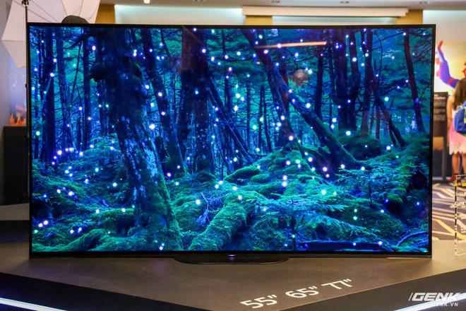 Sony giới thiệu dòng TV Bravia thế hệ 2019: vi xử lý hình ảnh X1 Ultimate mới, có thêm hệ thống loa Center giúp trải nghiệm âm thanh trung thực hơn - Ảnh 10.